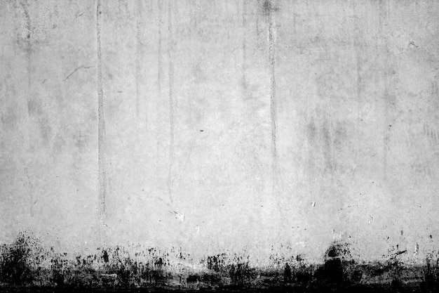 Texture of white wall with black edge photo free download for Free white texture