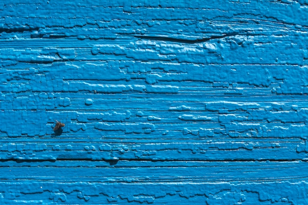 Texture. old painted wall of the house. old wooden fence. blue paint. fly on board. Premium Photo