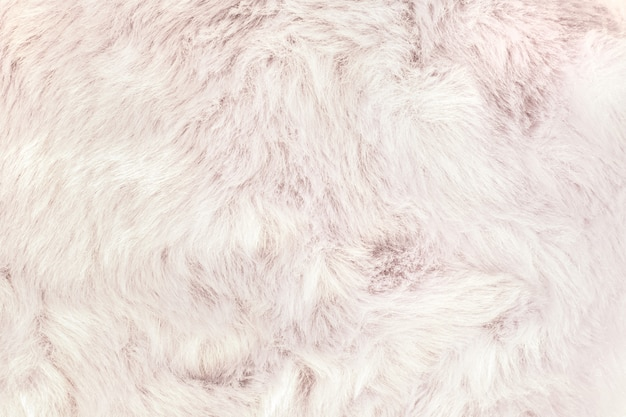 Texture of shaggy fur background. Premium Photo