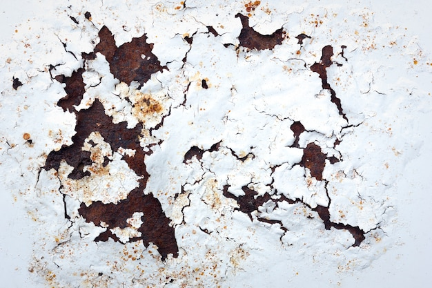 Texture white rust metal background Premium Photo