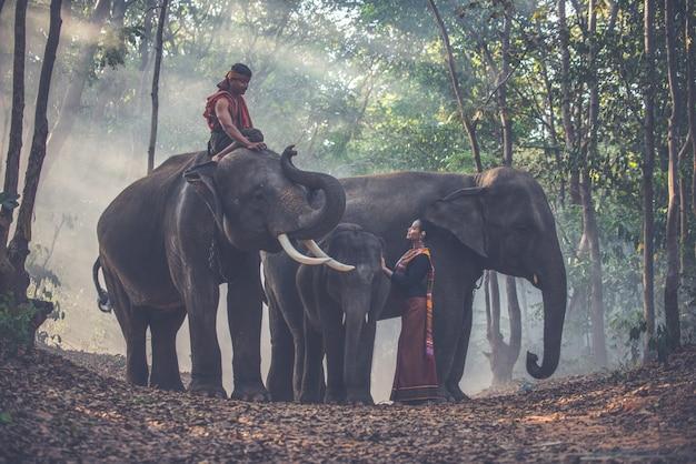 Тайские пастухи в джунглях со слонами. исторические моменты жизни из культуры таиланда Premium Фотографии