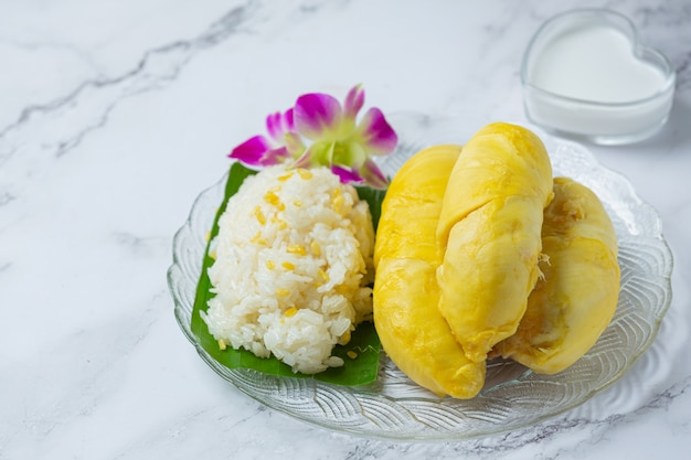 Thai sweet sticky rice with durian in a dessert. Free Photo