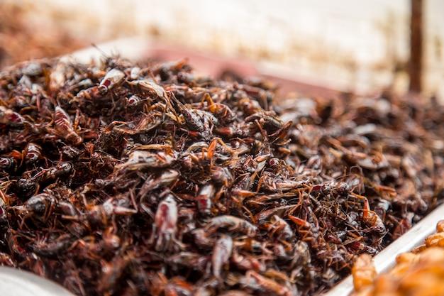 タイの伝統的な屋台のバッタ、幼虫、市場カウンター、伝統的なエキゾチックな食べ物のコンセプト 無料写真