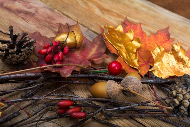 ドングリ、黄金とカラフルなカエデの葉と感謝祭の背景 Premium写真
