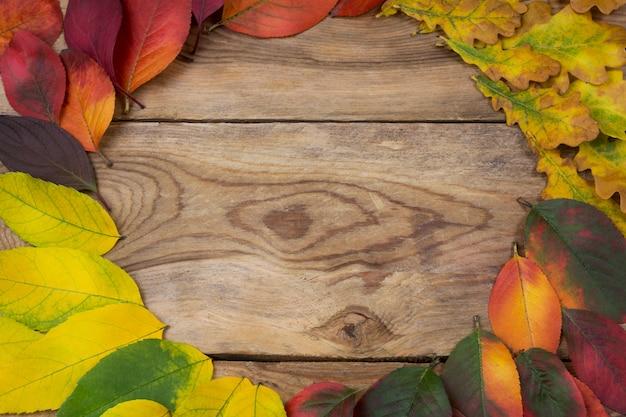 感謝祭の秋の葉の花輪フレーム、コピースペース Premium写真