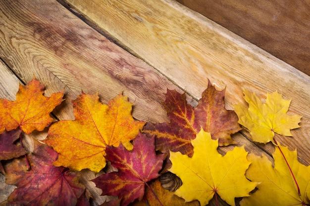 カエデの葉、コピー領域の感謝祭の素朴なグリーティングカード Premium写真