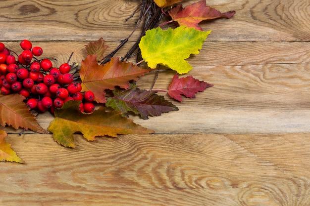 葉と木製の背景にナナカマドの果実と感謝祭の花輪 Premium写真