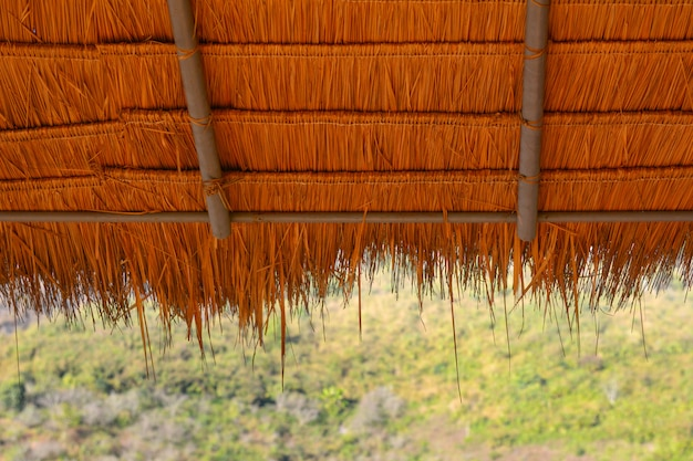 Thatch-roof with green nature background Premium Photo