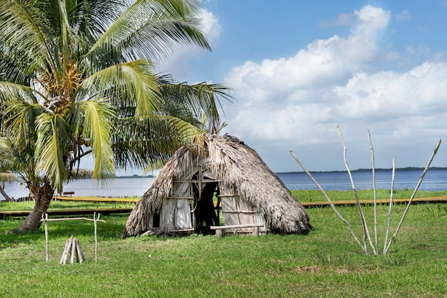 Thatched hut under a palm tree on the river bank in the jungle Premium Photo