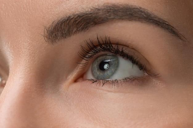 젊은 아름 다운 백인 여자의 얼굴에 회색 눈을 가까이 무료 사진
