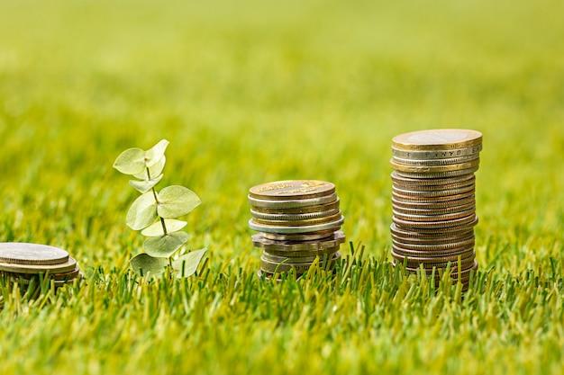 草の上のコインの列 無料写真