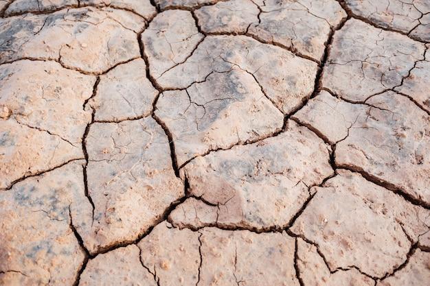 地中海地域の干ばつは、河床の背景を乾燥させます。 Premium写真