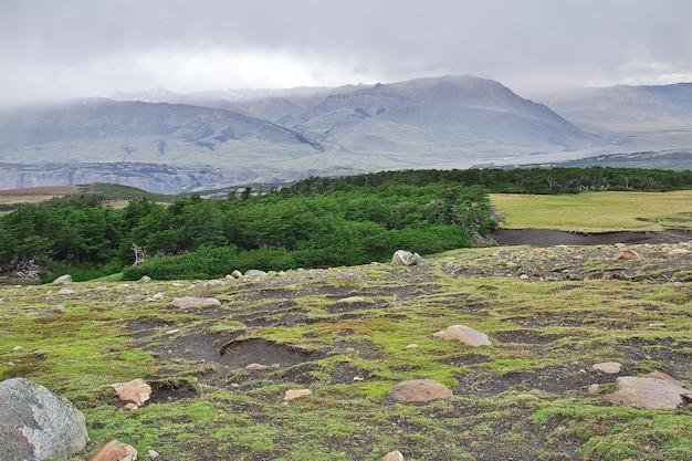 Лес в национальном парке лос-глейшер рядом с фитц-роем, эль-чалтен, патагония, аргентина Premium Фотографии
