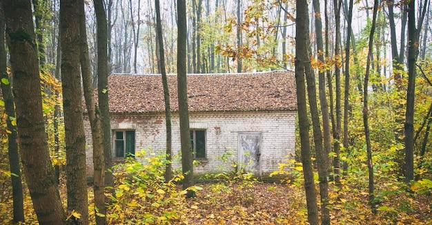 Заброшенный кирпичный дом в осеннем лесу Premium Фотографии