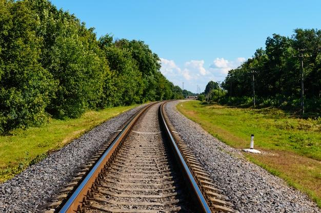 Железная дорога идет до горизонта, по обе стороны от зеленого густого леса. Premium Фотографии