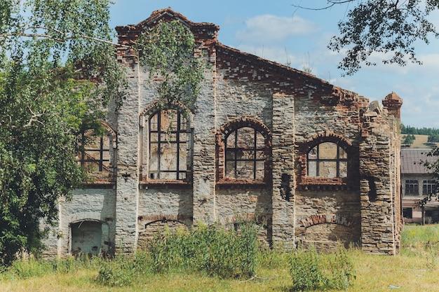 コケに覆われ、森の木々が生い茂った廃墟となった石造りの家の残骸 Premium写真