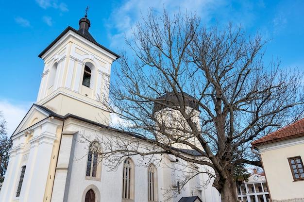 カプリアーナ修道院の中庭にある石造りの教会。裸の木や建物、モルドバの天気の良い日 無料写真