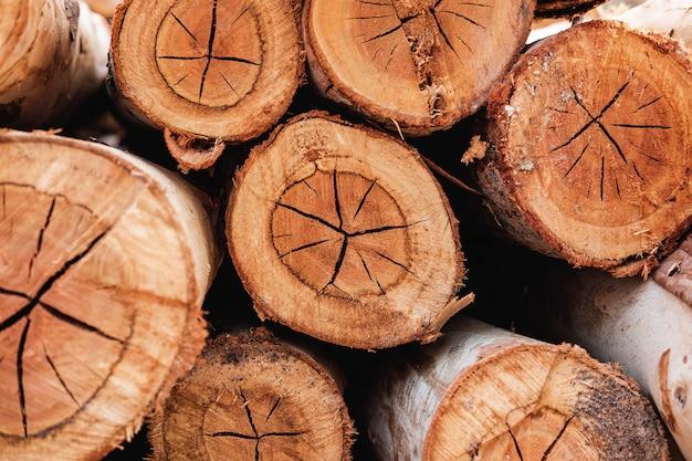 Таблица текстур из срезанного дерева Premium Фотографии
