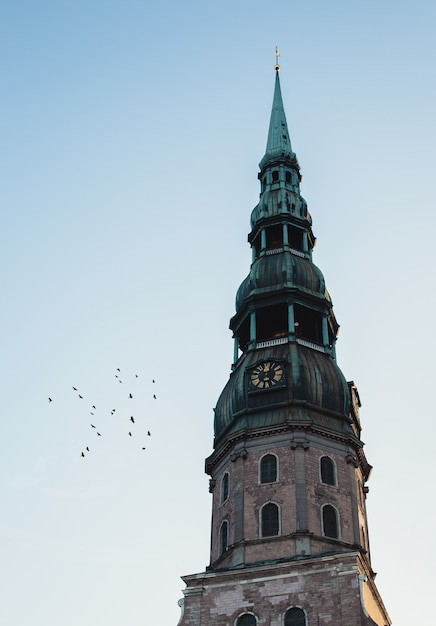 Верхняя часть часовой башни с зеленым верхом и летающими рядом птицами Бесплатные Фотографии
