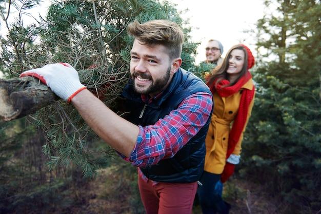 このクリスマスツリーは大きくてとても重いです 無料写真