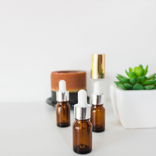 Three brown bottles of essential oils with cactus plant on white background Free Photo