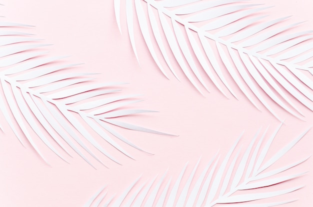 Three paper palm leaves on pink table Free Photo