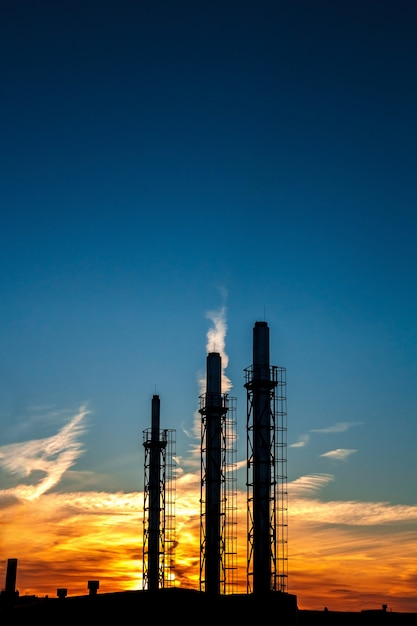 Three pipes of a plant on a background of sunset and blue sky. Premium Photo