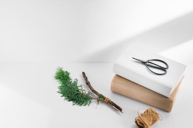 白い背景にthujaの小枝とスプールと2つの白と茶色の本のはさみ 無料写真