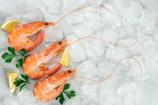 Тигровые креветки на фоне льда с лимоном и петрушкой. плоская планировка, копия пространства Premium Фотографии