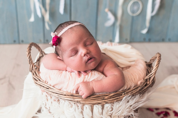 Tiny wonderful baby in basket Free Photo