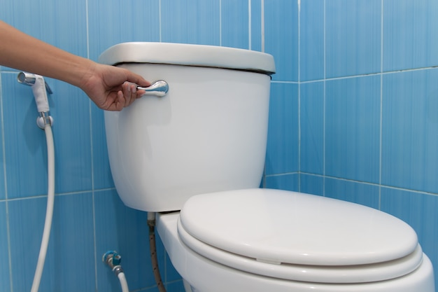 Toilet with a flush. press and flush.