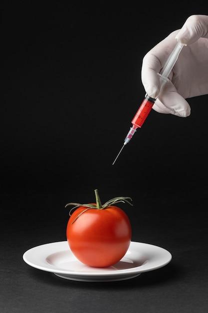 토마토 Gmo 과학 식품 프리미엄 사진