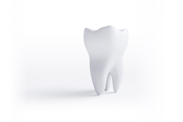 Tooth isolated on white surface Premium Photo
