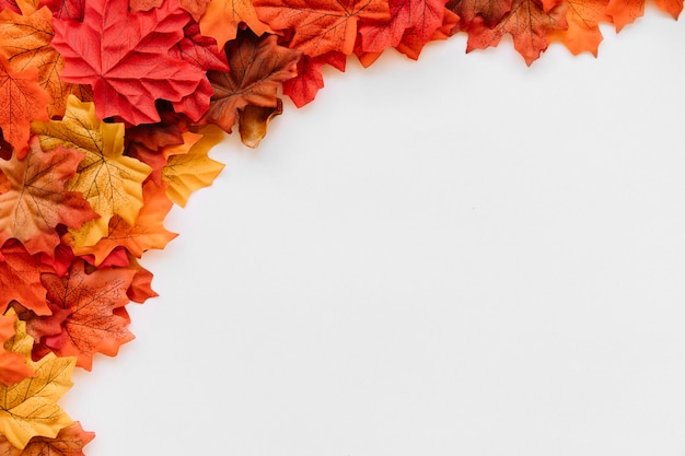 Top left fall leave frame pattern Free Photo