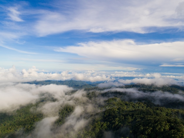 Top of mountain with view into misty valley. foggy valley mountain view. beautiful nature. Free Photo