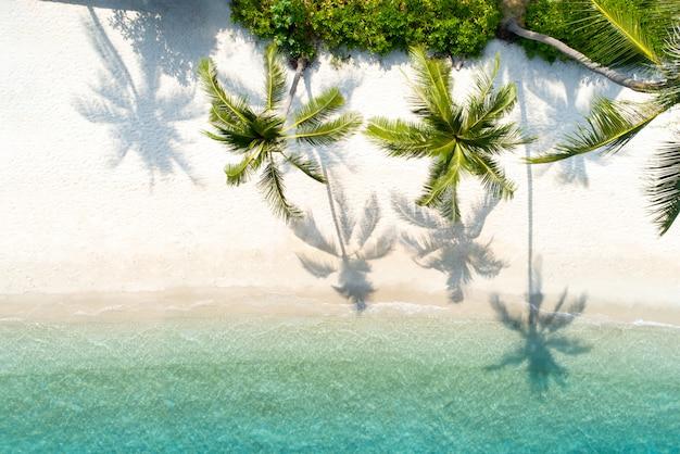 Top view aerial drone shot of beautiful beach Premium Photo