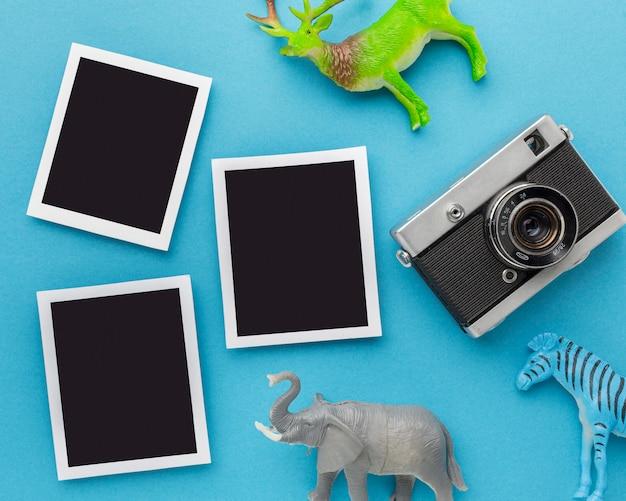 Vista dall'alto di figurine di animali con fotocamera e foto per la giornata degli animali Foto Gratuite