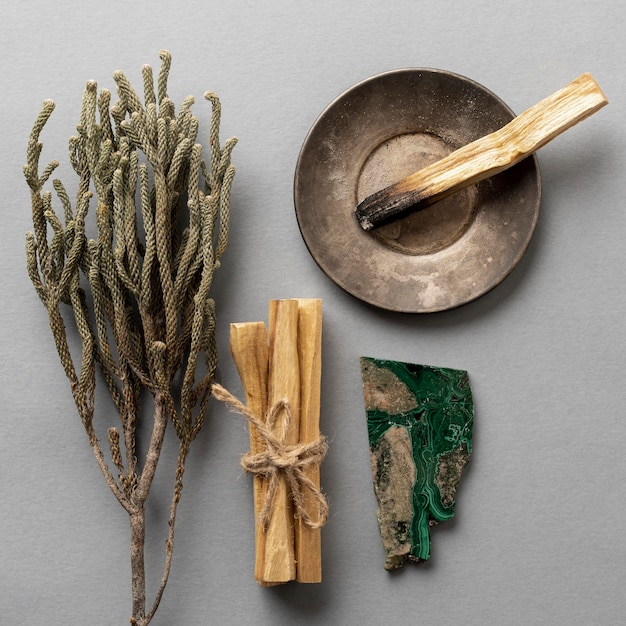 Top view aromatic plants and bursera graveolens Free Photo