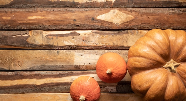 Top view arrangement with different sized pumpkins Free Photo