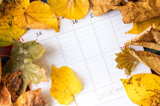 Top view arrangement with yellow leaves on calendar Free Photo