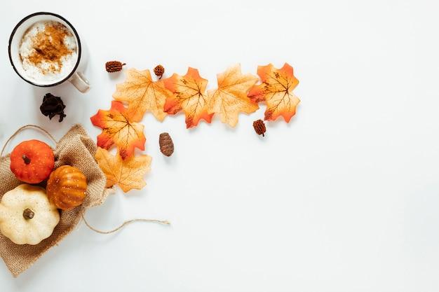 Top view autumn arrangement on white background Free Photo