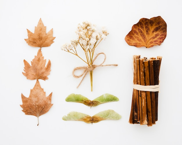 Top view autumn leaves flat lay Free Photo