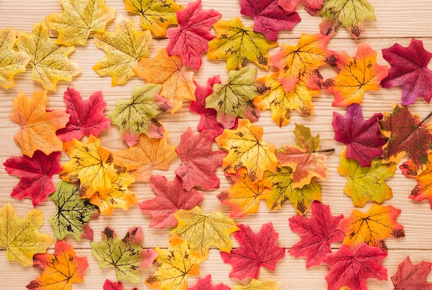 Top view autumn leaves on wooden table Free Photo