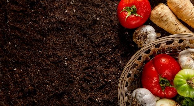 Vista dall'alto del paniere di verdure con spazio di copia Foto Gratuite