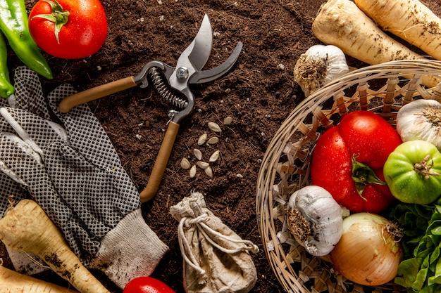 Vista dall'alto del paniere di verdure con le forbici Foto Gratuite