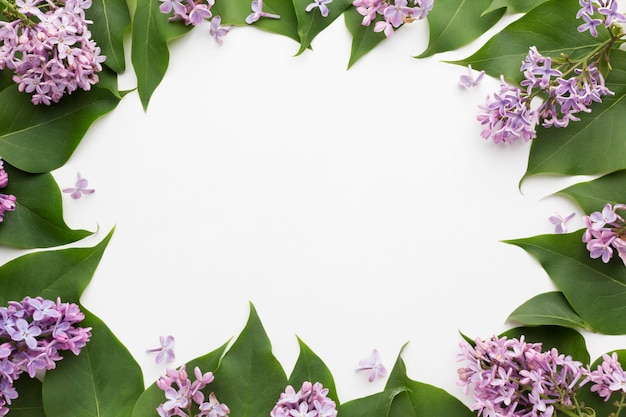 Top view of beautiful lilac frame concept Free Photo