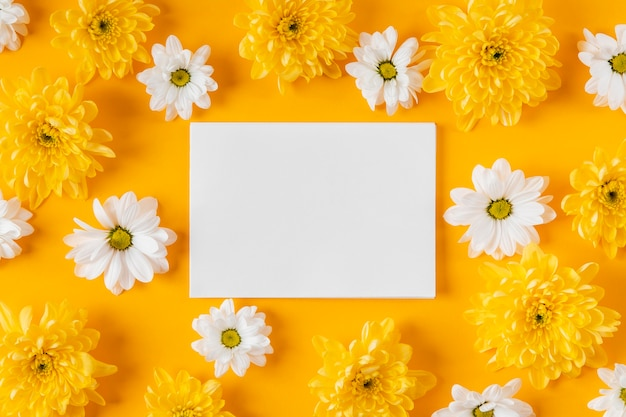 빈 카드와 함께 상위 뷰 아름 다운 봄 꽃 조성 무료 사진