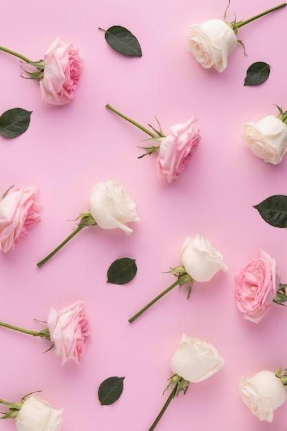 Вид сверху цветущих роз Бесплатные Фотографии