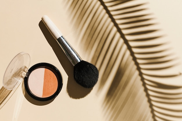 Top view blush with palm branch shadow Free Photo