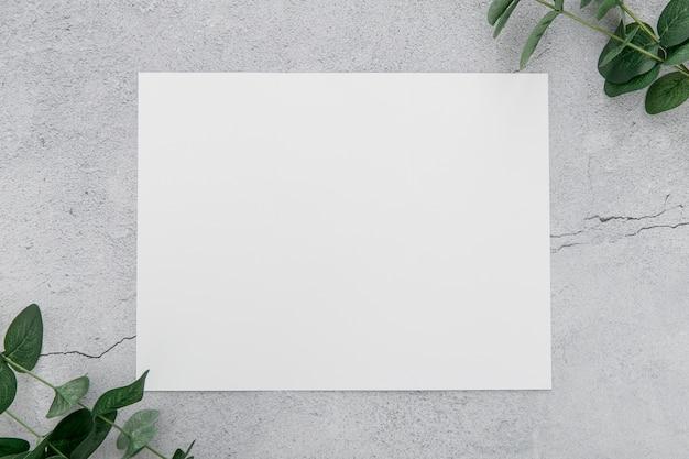 Вид сверху брошюра с листьями рядом Premium Фотографии
